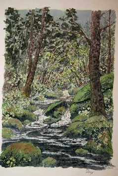 Hidden Brook, Watercolor by Doug DeWolfe of New View