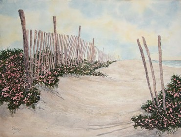 Beach Roses, Watercolor by Doug DeWolfe of New View