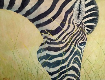 Zebra, Watercolor by Doug DeWolfe of New View