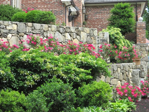 Naturalized Planting with Stone Retaining Walls by New View