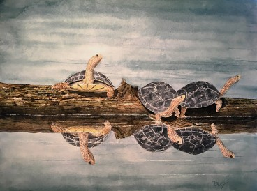 Turtles, Watercolor by Doug DeWolfe of New View